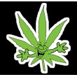 Novelty WEED Products (4)